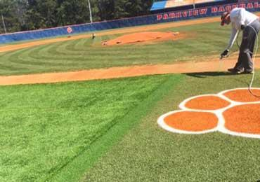 Removable Temporary Chalk Synthetic Turf Athletic Field