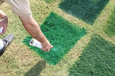 Shades Green Gr Turf Dye Colorant Touch Up Cover Paint Yard Lawns Golf Course