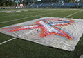 Removable Paint For Artificial Synthetic Field Turf